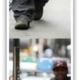 Channing Tatum and Jenna Dewan Shopping in Soho (Cropped)