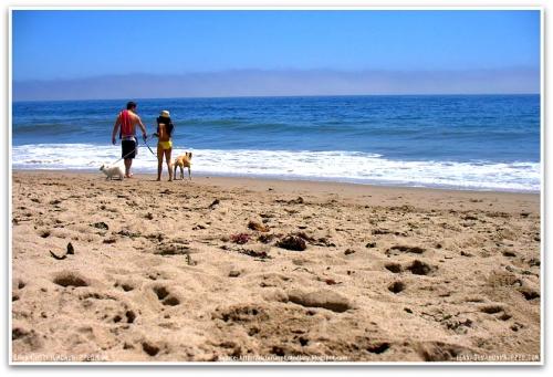 channing-tatum-jenna-dewan-lulu-meeka-leo-carrillo-beach-malibu